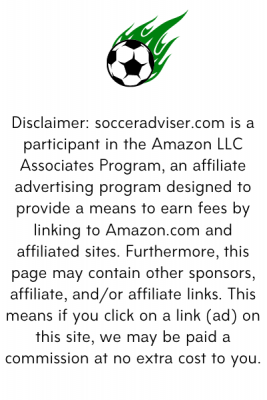 affiliate disclaimer vertical